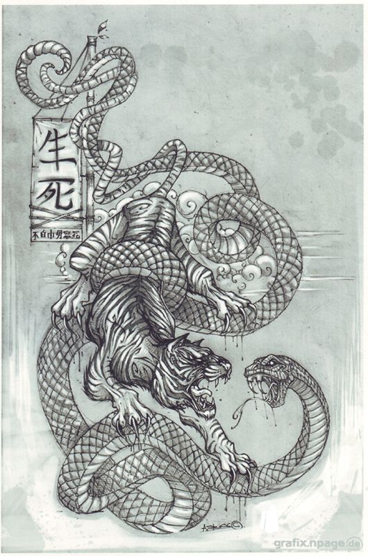 Japanese Art Snake Vs Tiger Tigervssnake By Steinart84