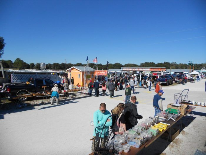 Have you visited Florida's most famous flea market yet? Check it out in Webster, only an hour from Orlando.