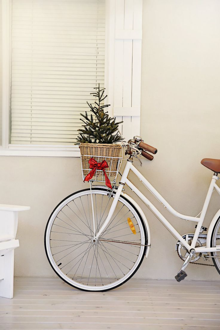 #BikeLove | you know if I was a daily commuter you would see this for sure, a Xmas tree in my bike basket!