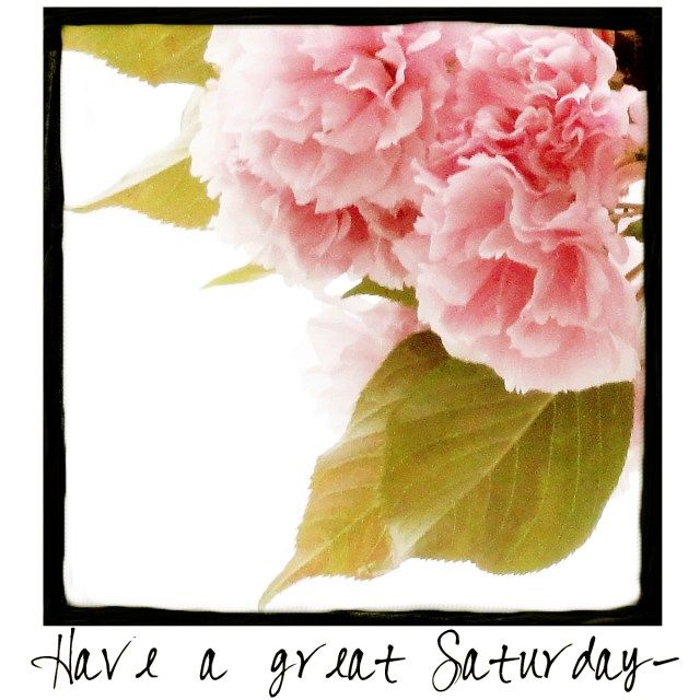 Have a great Saturday! Come by and check out A Warm Hello!