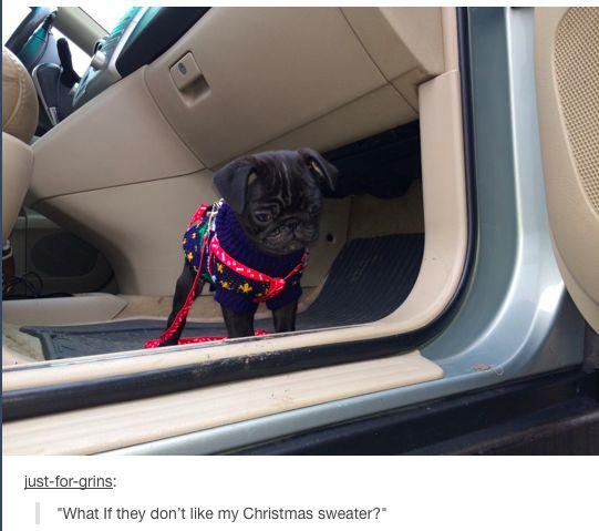 Zalfie's dog Nala ^.^