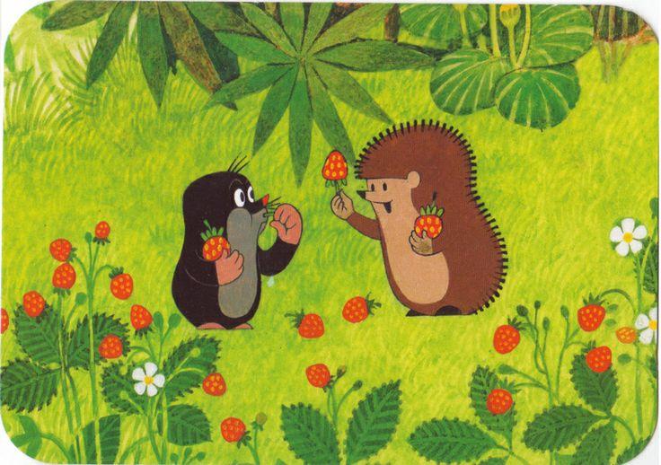 (2014-07) Muldvarpen spiser jordbær med pindsvinet