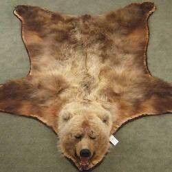Faux Bear Skin Rug Looks Pretty Realistic To Me