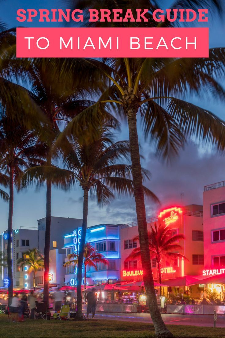 #SpringFling #HallmarkChannel Everything you need to know about Spring Break in Miami!