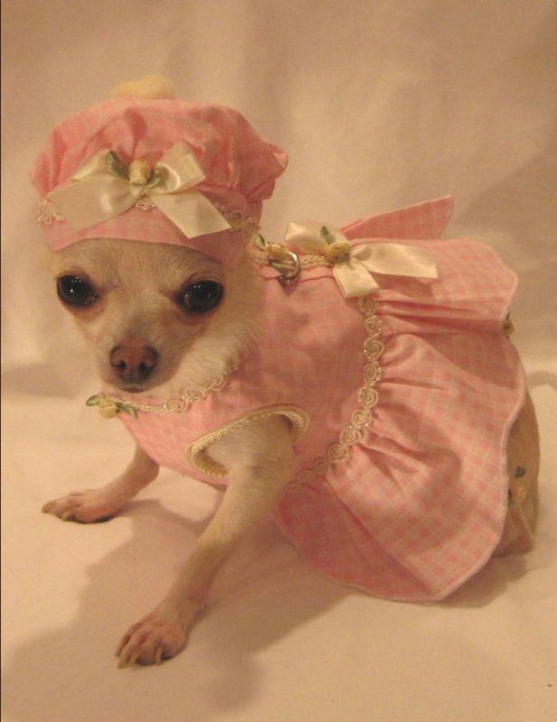 Little Darling Harness Dress Set Dog Clothes Chihuahua Xs M L