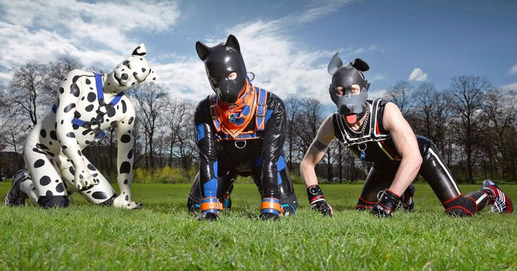Human pups: Everything you need to know about the fetish for dressing up in latex puppy suits