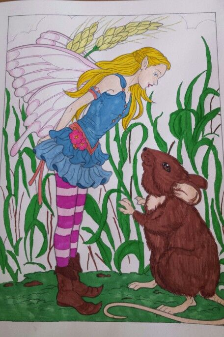 Fairies coloring by Darcy May coloring book