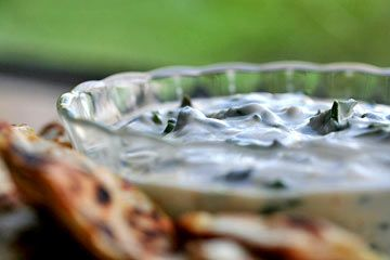 Tzatziki recipe with yogurt, garlic, lemon juice, olive oil, and Swiss chard instead of cucumbers.