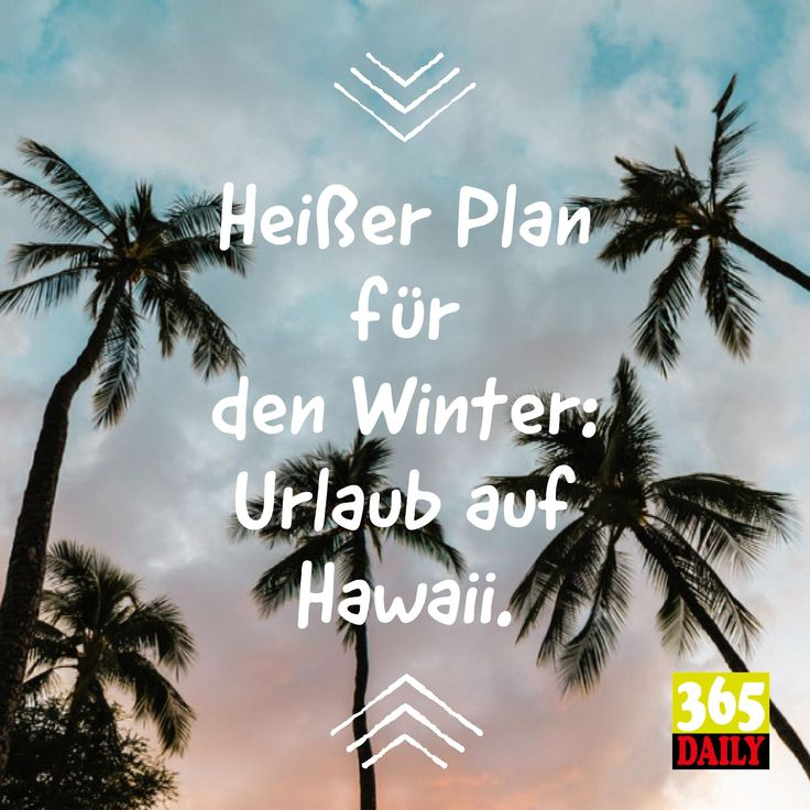 Heißer Plan für den Winter:  Urlaub auf Hawaii.   Wenn es kalt ist, suchen wir die Wärme. Und wenn heiß wird, muss mindestens die Klimaanlage her. Aber jetzt geht es erst einmal nach Hawaii.   #Urlaub #Weihnachten #Winter #Plan  #Reisebüro #Abheben #wegfliegen #fliegen #wegfahren #ichbinweg #Wegsein #Abhauen #Wärme #Kälte #Strand #Palmenstrand #Sommerferien #Winterferien #Winterurlaub #Kältewelle #Alternativurlaub  #Wetter #Fernreise #Urlaubsflieger #Flughafen #Karibik