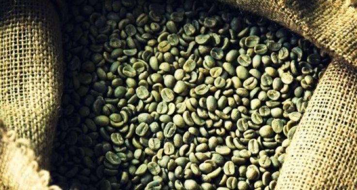 ¿Funciona el café verde para adelgazar?