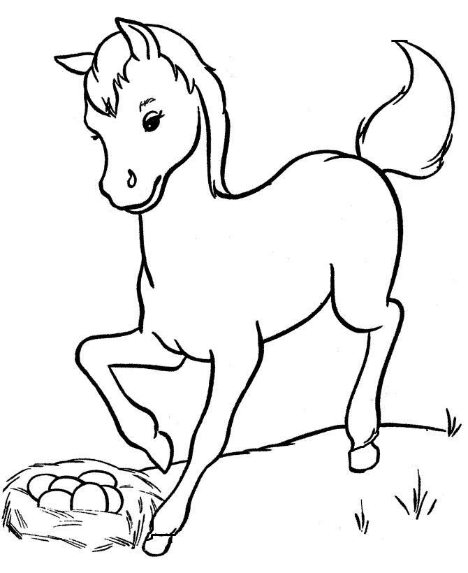 Horse Seeing Eggs