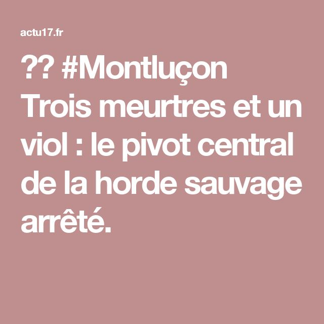🇫🇷 #Montluçon Trois meurtres et un viol : le pivot central de la horde sauvage arrêté.