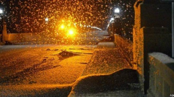 Enxame de insetos causa acidentes e fecha ponte por falta de visibilidade - BBC Brasil