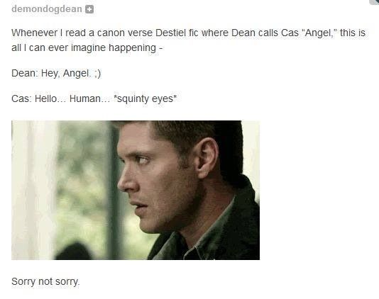 supernatural meme