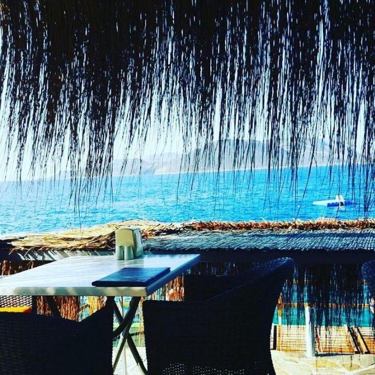 Mütevazi ve dost canlısı bir otel. Kaş Amphora Hotel. #çukurbağyarımadası ☎️ 0242-8362907 - www.kucukoteller.com.tr/amphora-otel Fiyatlarıda gayet makul, oda kahvaltı 2 kişi 200-250 TL civarı. Yemekleri dışarıdan daha  ucuz ve lezzetli. Deniz manzarasına karşı kahvaltı veya akşam yemeği sunuluyor.