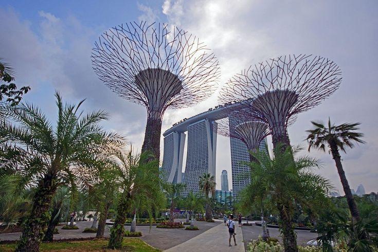 Прибрежные сады Сингапура - Путешествуем вместе