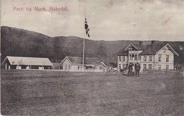 Mørk i Hakadal