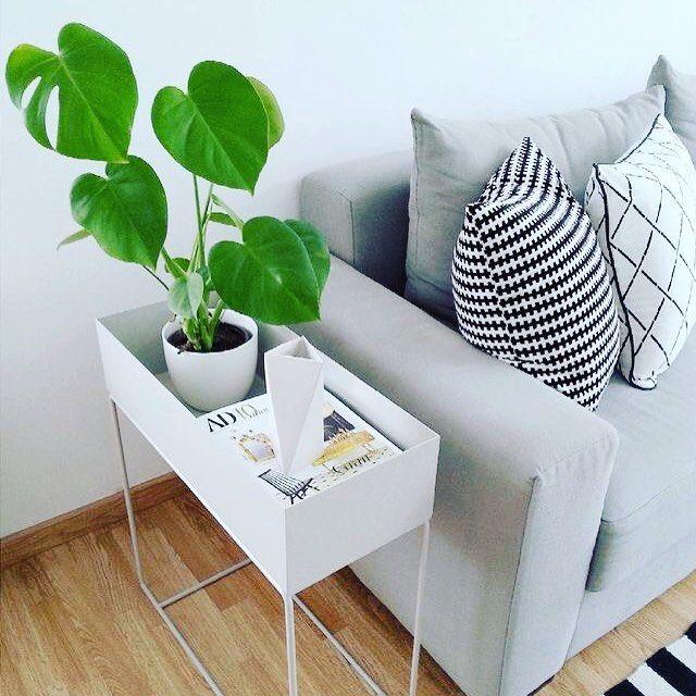 ferm LIVING Plant Box: http://www.fermliving.com/webshop/search/green-living/plant-box-grey.aspx