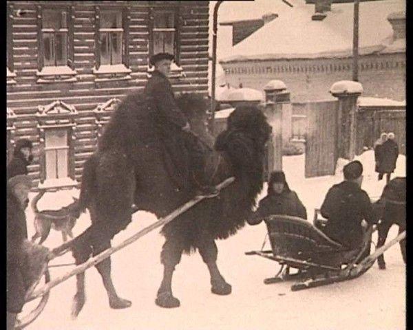 ХЛЫНOВ-ВЯТКA-КИРOВ l XIV - XX века - 1953 сбежал верблюд