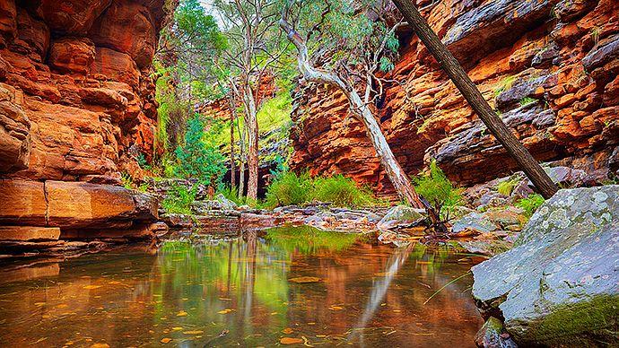 Alligator Gorge, Alligator Creek  Mt Remarkable National Park, Flinders Ranges, South Australia, Australia     http://www.scottleggoimages.com/prints/forests-rivers-waterfalls/alligator-gorge/