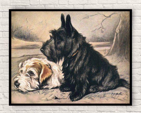 Lucy Dawson Dog Print Vintage Dog Print Dog Print Antique Dog