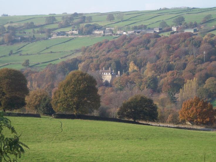 English Countryside (Rivelin Valley, Sheffield)