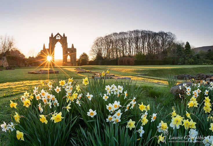 Guisborough Priory Sunrise