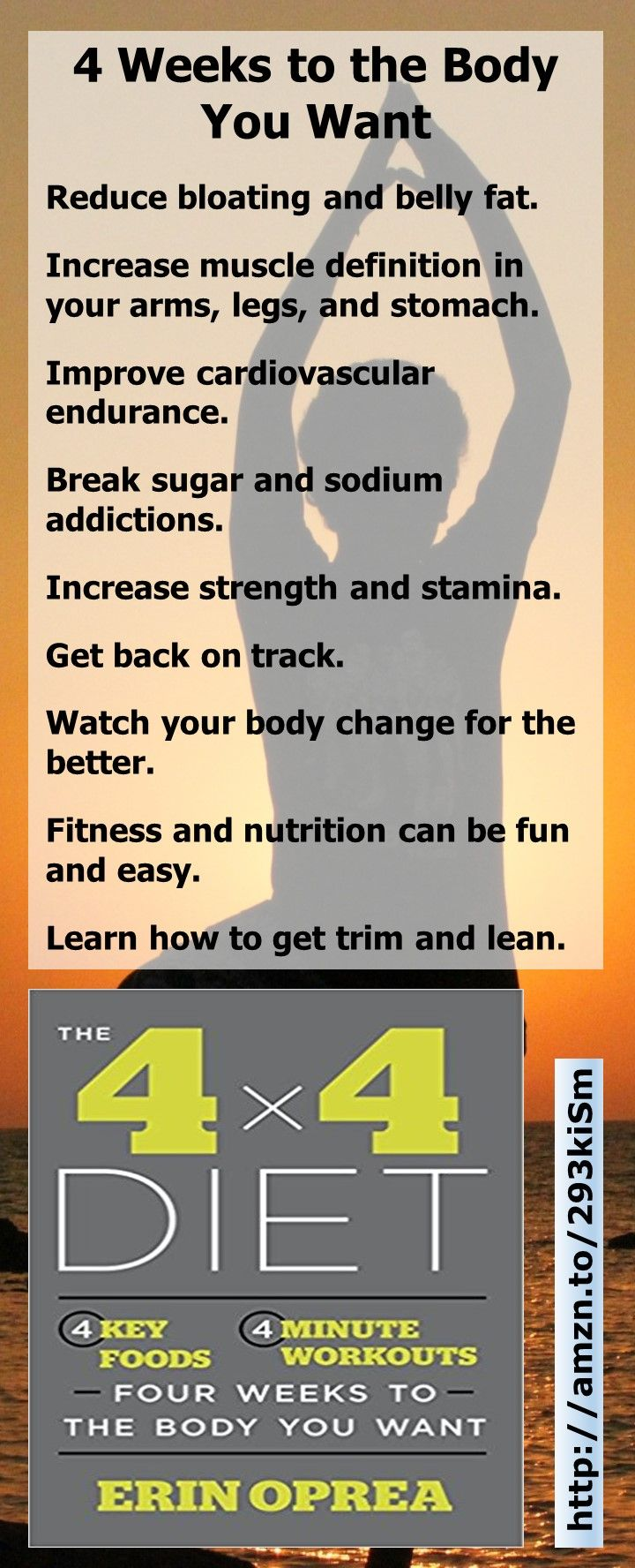 what is the 4 x 4 diet