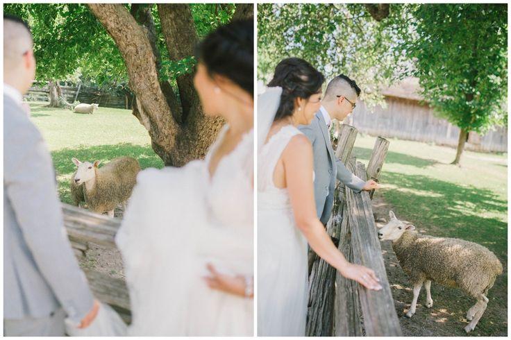 black creek pioneer village wedding. Country wedding near toronto. Farm weddings in GTA. GTA outdoor wedding venue.