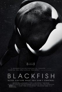 Blackfish (2013). Most powerful film I've seen in a LONG time. If you ever even think about going to SeaWorld, watch this. The untold cruelty and lies will floor you. Just heartbreaking