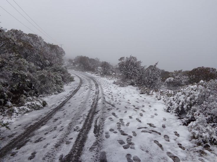 Snow on the track up to Mount William