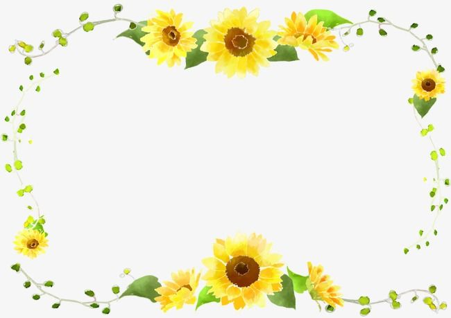 Sunflower Border Curve Decorative Foliage Sunflower Clipart Sunflower Frame Png Transparent Clipart Image And Psd File For Free Download Sunflower Clipart Flower Frame Sunflower