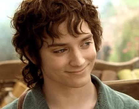 Elijah wood frodo baggins for the weird piece of art i 39 m for Pics of frodo baggins