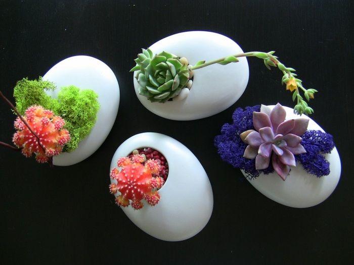 Sukkulente Eierschalen arrangieren Bastelideen