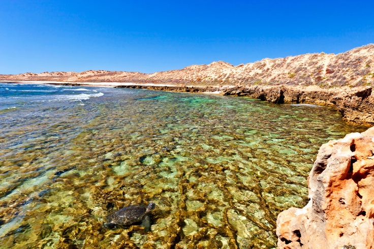 'turtle rock' warroora station, north west western australia