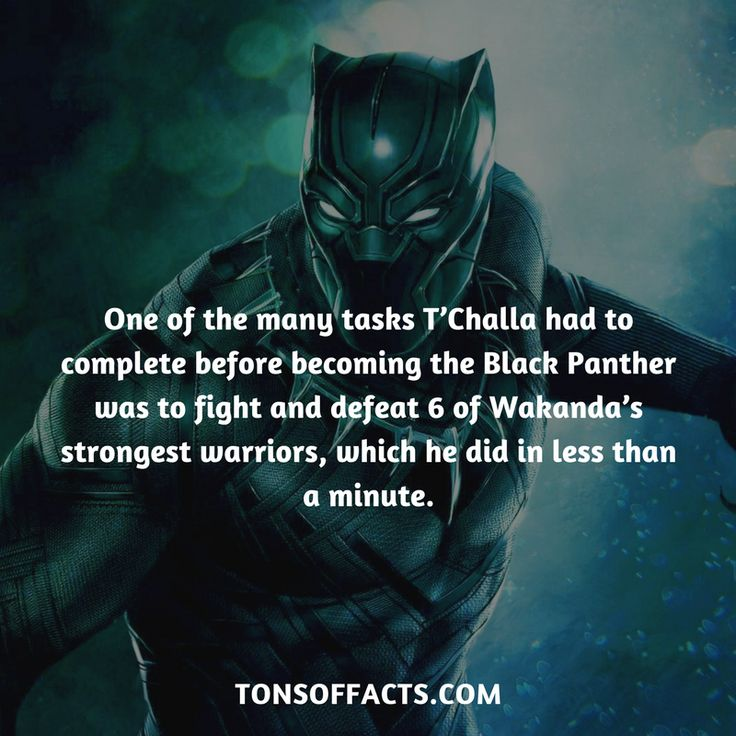 One of the many tasks T'Challa had to complete before becoming the Black Panther was to fight and defeat 6 of Wakanda's strongest warriors, which he did in less than a minute. #blackpanther #facts #marvel #comics #superhero