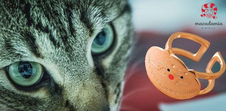 Se li amate come li amiamo noi, …se avete un legame speciale con il vostro amico micioso…per Natale regalatevi qualche cosa di unico: anello gatto in argento regolabile. Compralo on line in tutta sicurezza. http://www.macadamiajewels.com/rings/lucky-black-ring-245.html