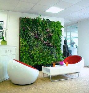 Le mur végétal intérieur est une approche nouvelle de l'aménagement de vos espaces de vie. Il permet le revêtement végétal de vos murs, et présente un pa...