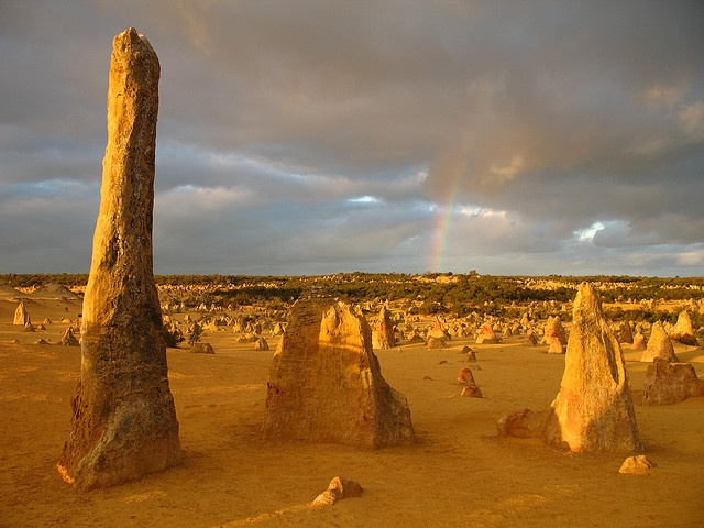 Pinnacles Desert, Nambung National Park, Australia