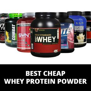 Find the best whey protein powder for a cheap price.