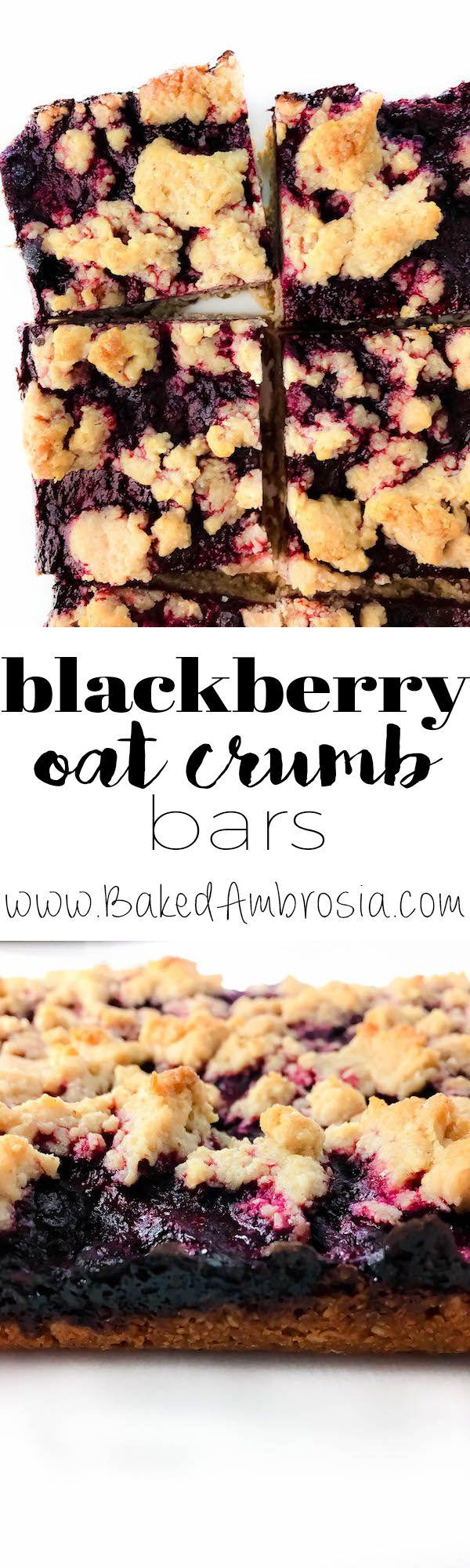 Blackberry Oat Crumb Bars (Gluten Free   Vegan)