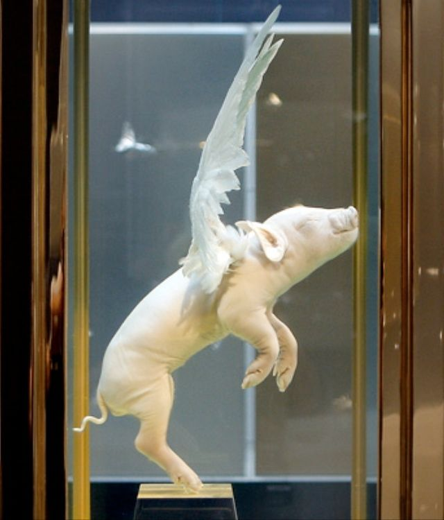 Damien Hirst ( yeah and pigs will fly ? !!! ) and not talking about police helicopters