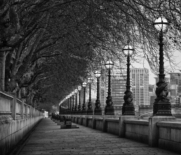 6 Tips for Creating Leading Lines to Make Your Photos Stand Out More | DPS