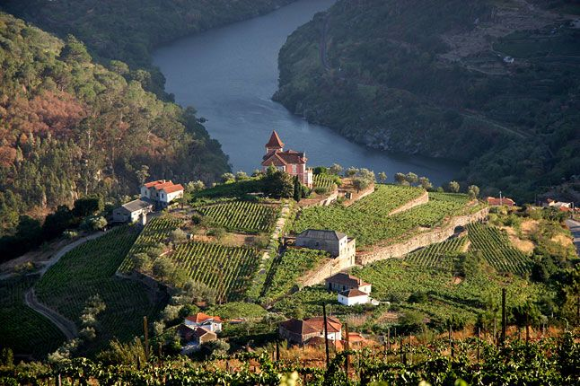 CNTraveller.com's guide to eating out in Douro valley (Condé Nast Traveller)