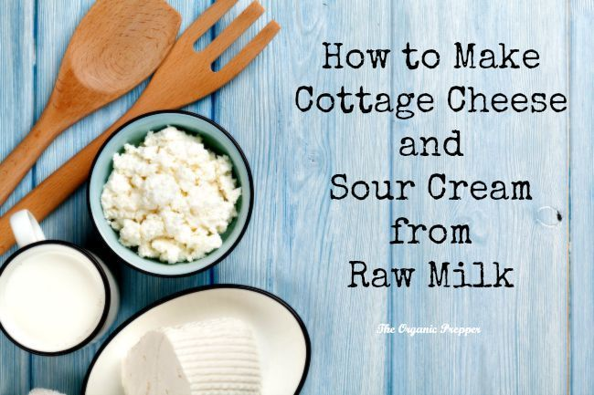 How To Make Cottage Cheese And Sour Cream From Raw Milk Raw Milk Recipes No Dairy Recipes Raw Milk