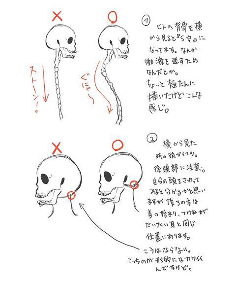 思っクソ自己流でアバウトです。あとすごく字が汚い。 ○評価、タグ、ブクマ、コメ有難うございます! ●講座的なアレではなくて年も明けるし描き方復習してみた程度のアレなので流し読みしたって下さい ●コメで質問頂いたのですが、顔のパーツ描く順番は私は・・・ 頭蓋骨というか頭の形込み、首もアリの、のっぺらぼうを描く→耳を描く→鼻を描く→口を描く→髪を描く→眉毛→まぶた→最後に瞳って順番になります。 本文でも描きましたが、私にとって耳の位置はホント大事で鼻の位置も耳の位置で決まります。耳の位置がおかしいと連鎖して全部グチャグチャになるので・・・;;; .