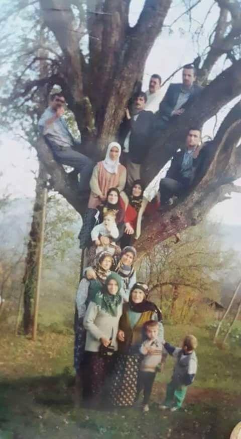 Soy ağaci bulunmustur :¶