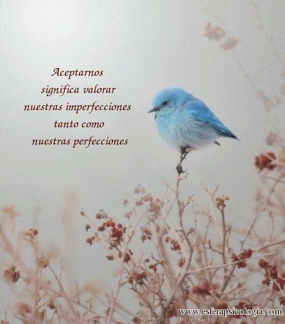 #aceptación #psicología