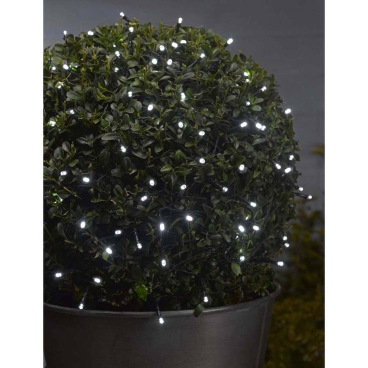 These string lights are perfect for adding sparkle to your home or garden.These bright white string lights features 1000 bulbs and look great used at any time of year and particularly for events such as weddings, parties and summer barbecues. Suitable for indoor or outdoor use, these string lights are battery operated and come with 4 x AA batteries included. They also feature the latest timer technology with a built in memory timer which automatically switches them off after 6 hours so you…