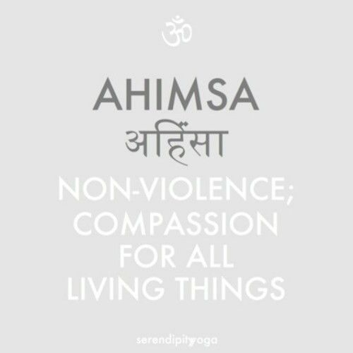 Ahimsa- Nonviolence nonkilling - in the 8 limbs of yoga this purposefully comes before Satya which means truthfulness. Above all else cause no harm